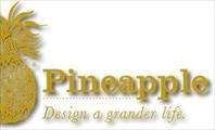 Pineapple Homes New Home Builder in Jacksonville