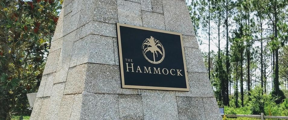 The Hammock at Twenty Mile New Homes For Sale